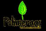 Polimeraas
